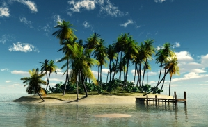 Expat island with palm trees